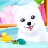 Fluffy Puppy Care