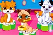 juegos de chicas,lindas mascotas