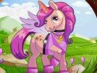 Pony día de Spa